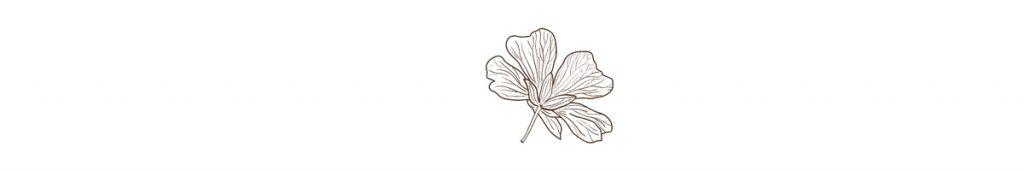 avdelare blomma
